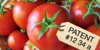 4764_tomatoTakeover_3_200x100