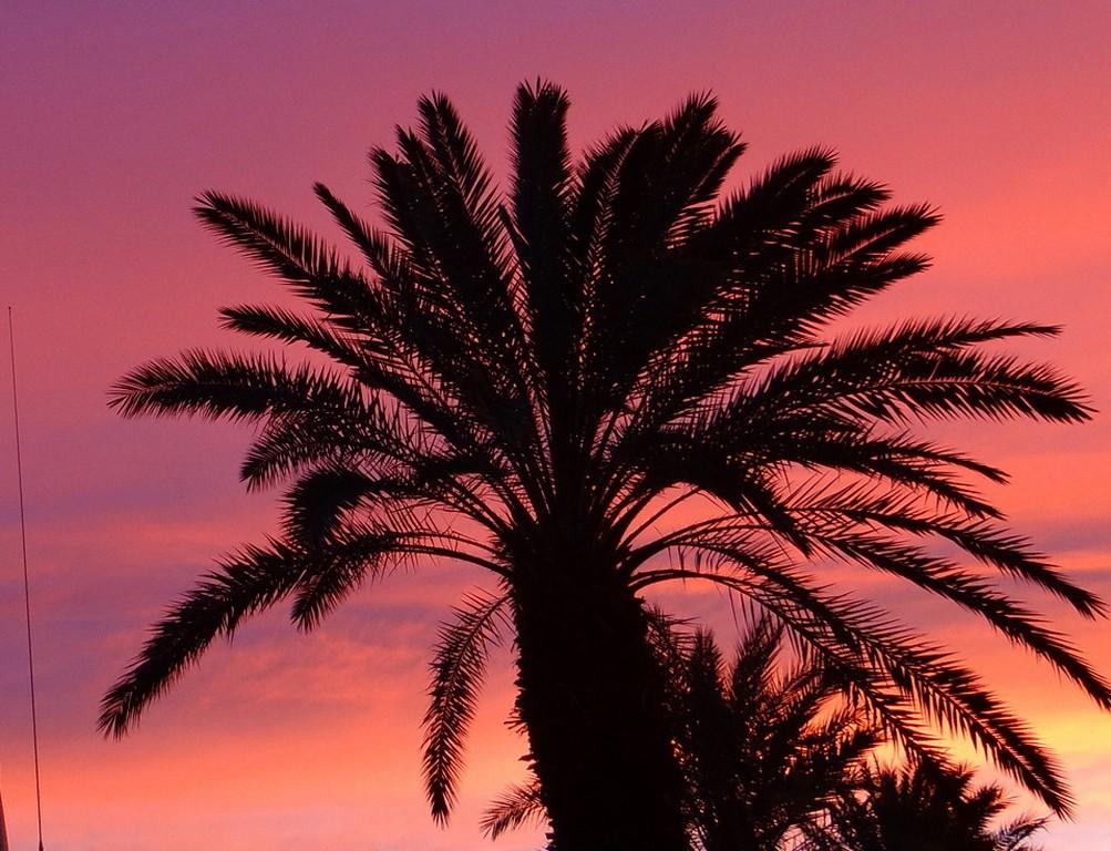 Speed datation Palm Desert ca