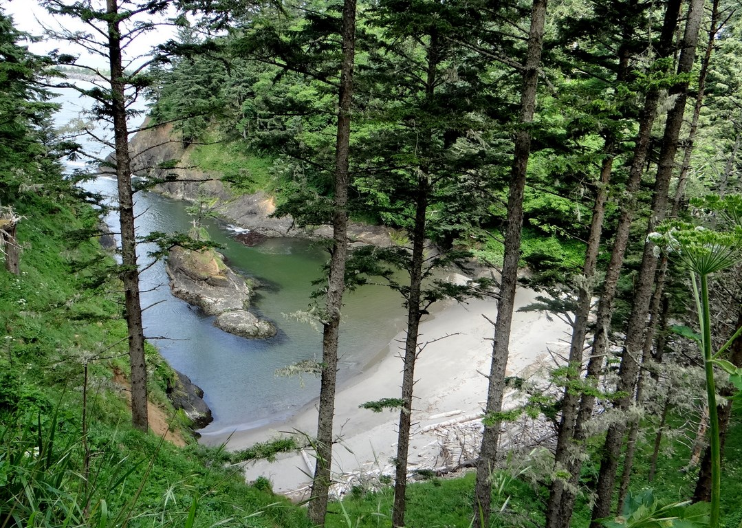 Dead Man S Cove Beach At Cape Disappointment In Ilwaco Washington